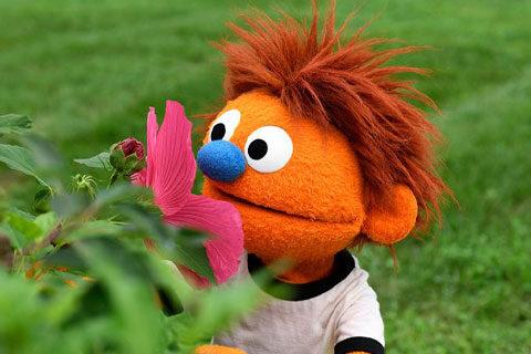 Hank-smelling-flower